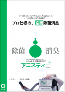 amisty_6p_pdf