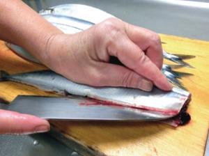 ジアミスティー®による魚の除菌