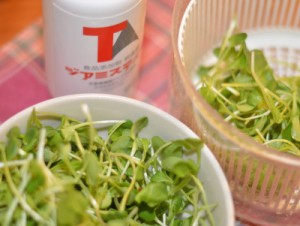 ジアミスティー®によるサラダの殺菌